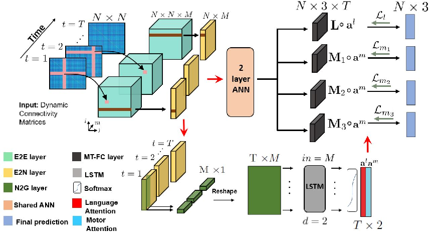 Figure 1 for A Multi-Task Deep Learning Framework to Localize the Eloquent Cortex in Brain Tumor Patients Using Dynamic Functional Connectivity