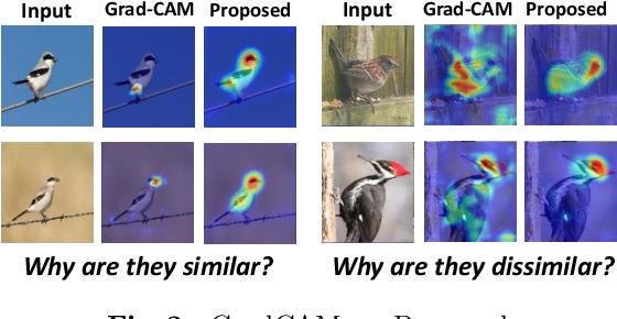 Figure 3 for Towards Visually Explaining Similarity Models