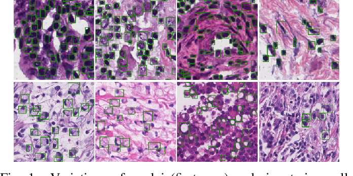 Figure 1 for SRPN: similarity-based region proposal networks for nuclei and cells detection in histology images