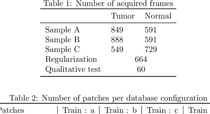 Figure 2 for Intraoperative margin assessment of human breast tissue in optical coherence tomography images using deep neural networks