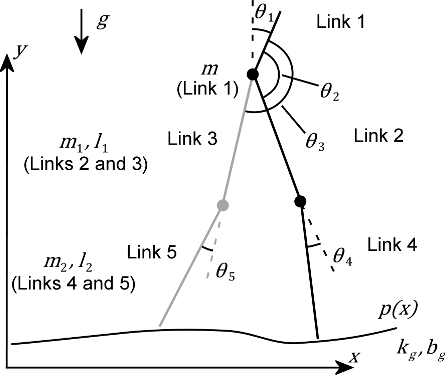 Figure 1 for Evolution of central pattern generators for the control of a five-link bipedal walking mechanism