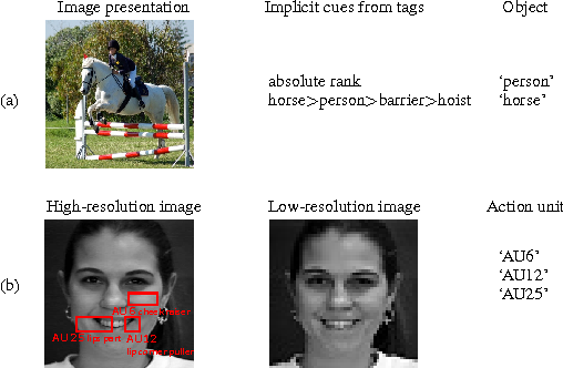 Figure 1 for Learning with Privileged Information for Multi-Label Classification