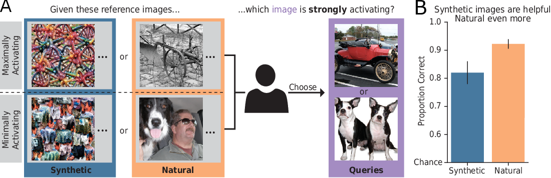 Figure 1 for Exemplary Natural Images Explain CNN Activations Better than Feature Visualizations