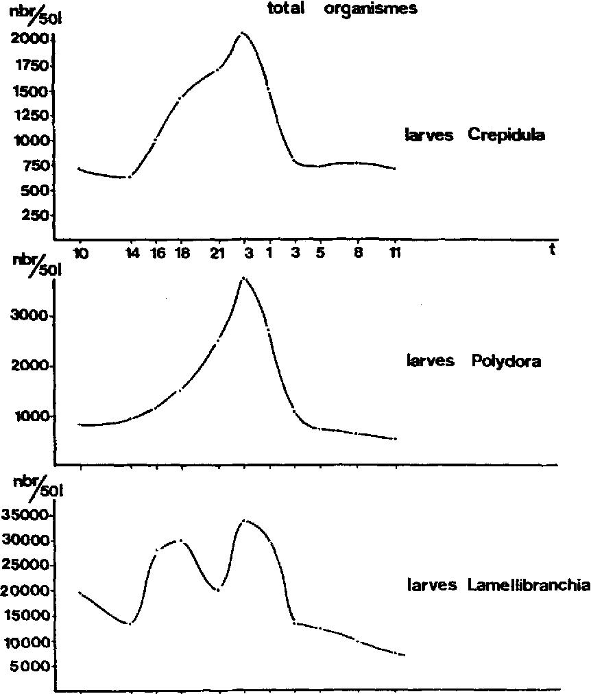 Fig. 2. La densit~ du m~roplancton en surface au cours d'une