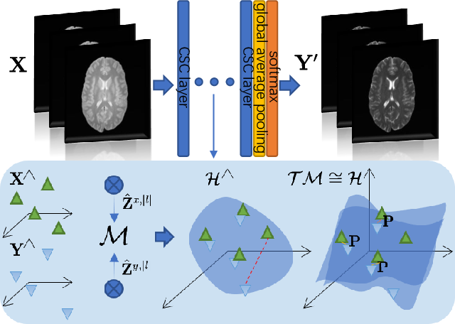 Figure 1 for Brain Image Synthesis with Unsupervised Multivariate Canonical CSC$\ell_4$Net