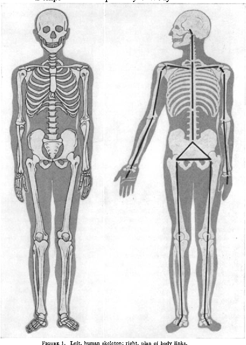 Figure 1 from The Anthropometry of Body Action - Semantic Scholar