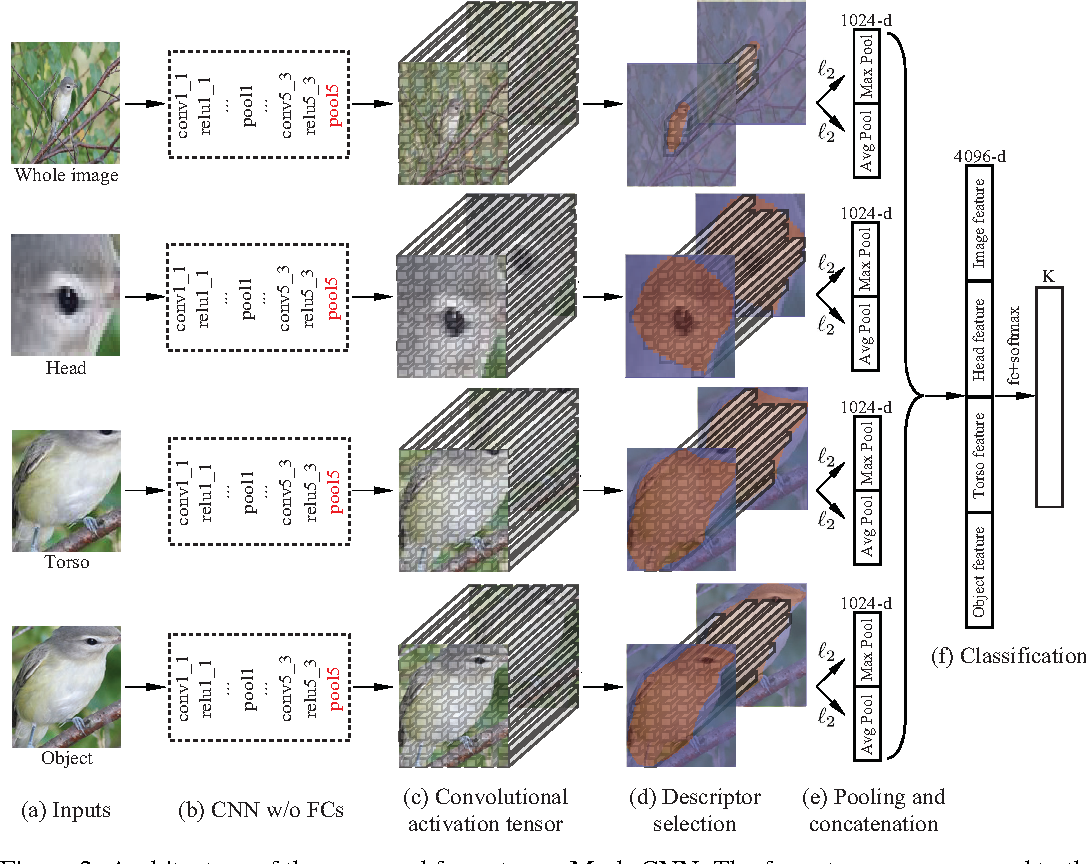 Figure 2 for Mask-CNN: Localizing Parts and Selecting Descriptors for Fine-Grained Image Recognition