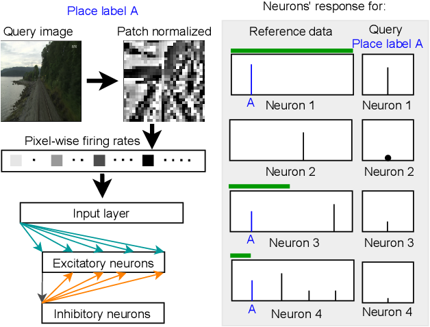 Figure 1 for Spiking Neural Networks for Visual Place Recognition via Weighted Neuronal Assignments