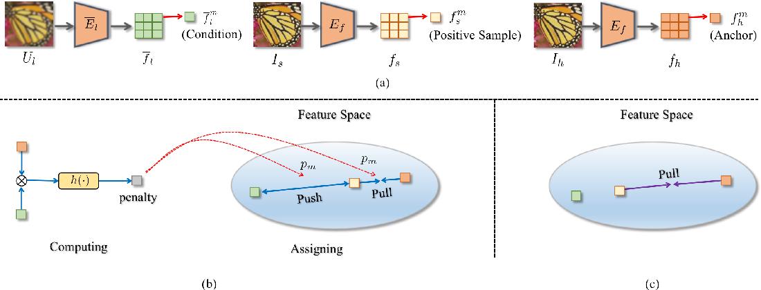 Figure 3 for Blind Image Super-Resolution via Contrastive Representation Learning