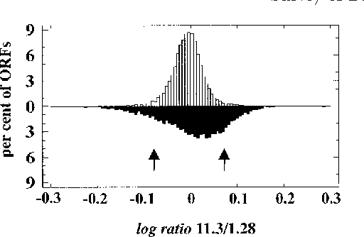 Figure 2.—Distribution of log ratio values for the ORFs in both 11.3/1.28 genomic comparison (solid bars) and control self-hybridization (open bars) experiments. Arrows indicate