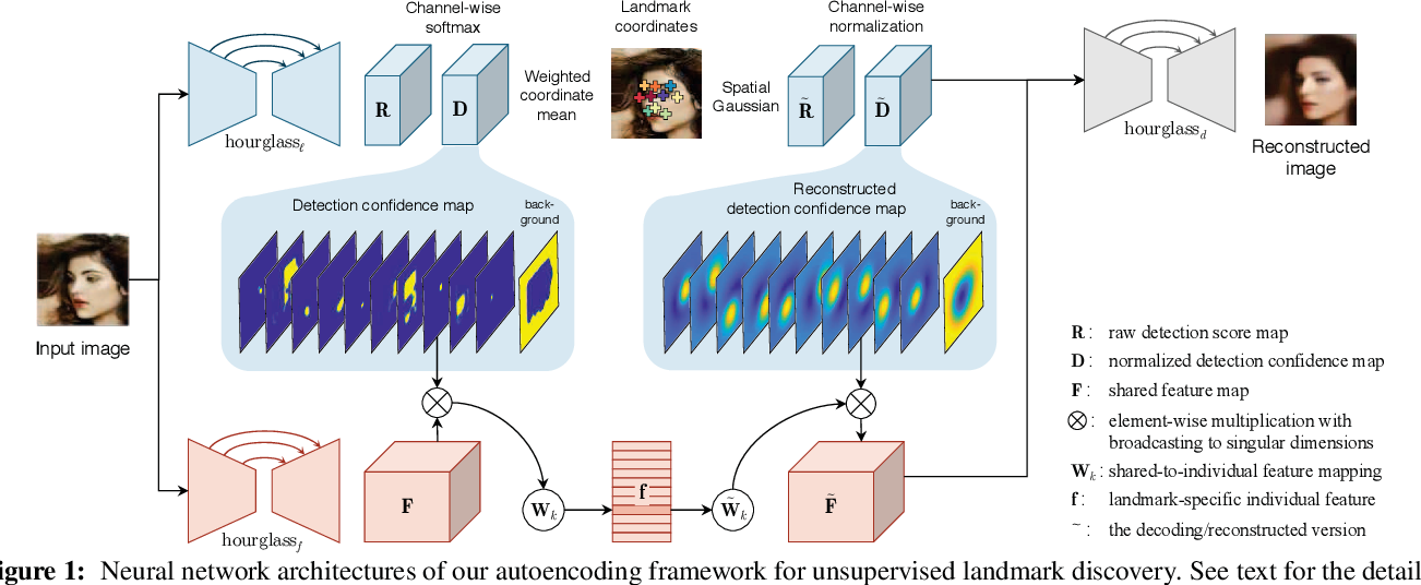Figure 1 for Unsupervised Discovery of Object Landmarks as Structural Representations