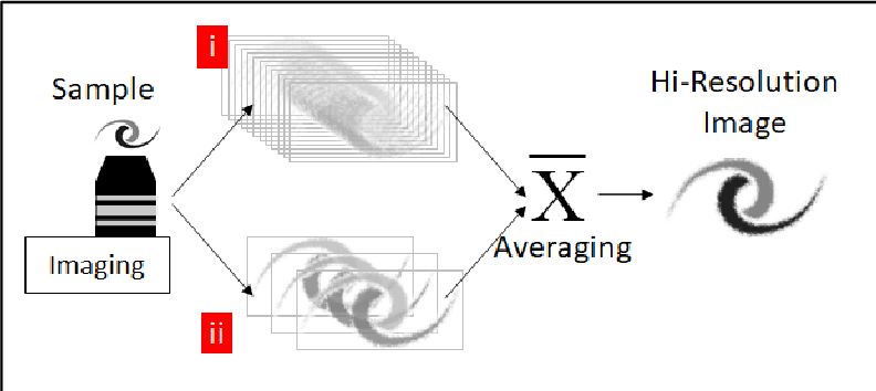 Figure 1 for Deep machine learning-assisted multiphoton microscopy to reduce light exposure and expedite imaging