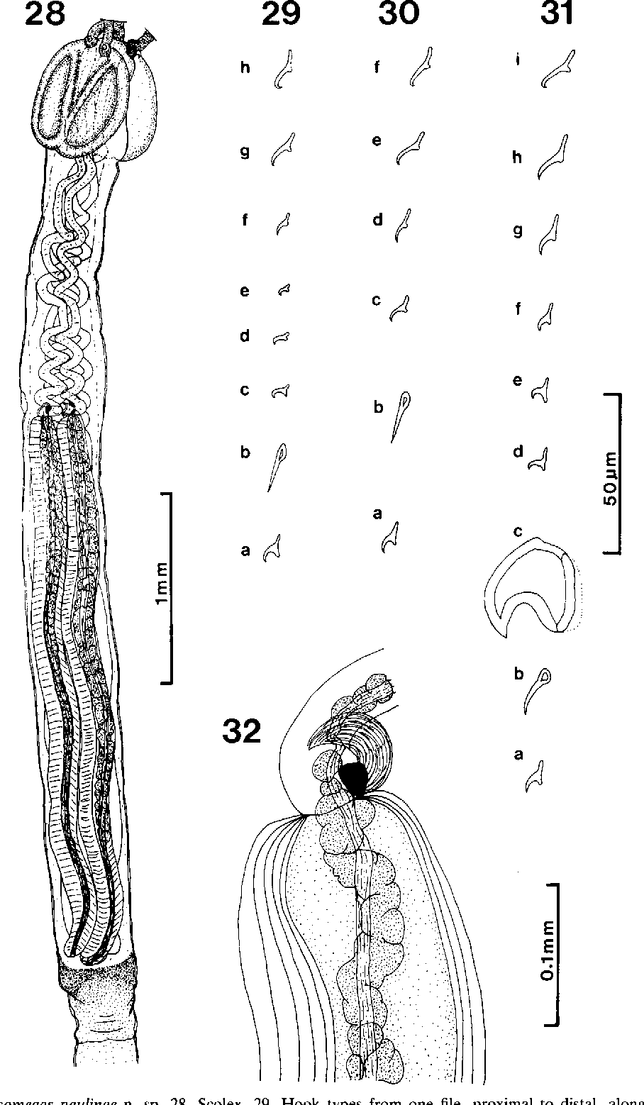 figure 28-32