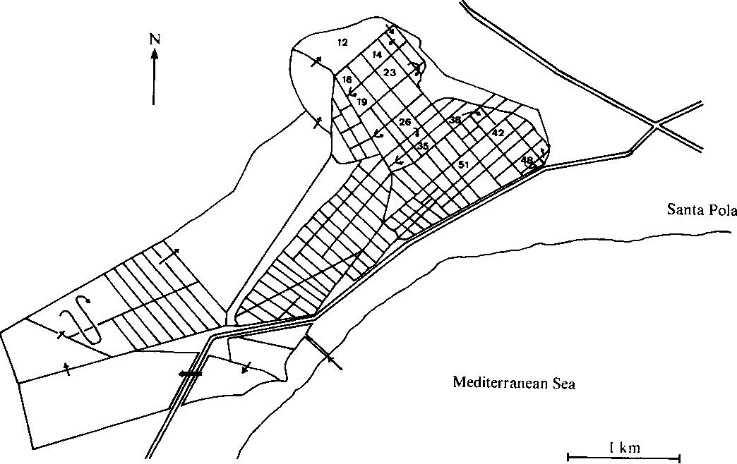 Numerical Taxonomy Of Moderately Halophilic Gram Negative Rods