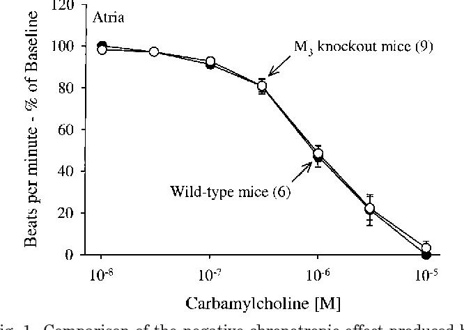 Figure 1 from M(3)-receptor knockout mice: muscarinic receptor ...