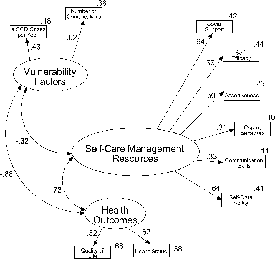 Testing the Theory of Self-care Management for sickle cell disease