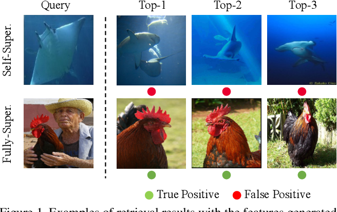 Figure 2 for Can Semantic Labels Assist Self-Supervised Visual Representation Learning?