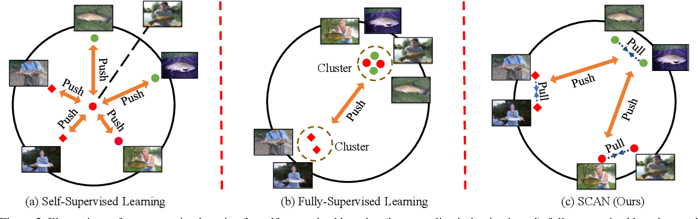 Figure 3 for Can Semantic Labels Assist Self-Supervised Visual Representation Learning?