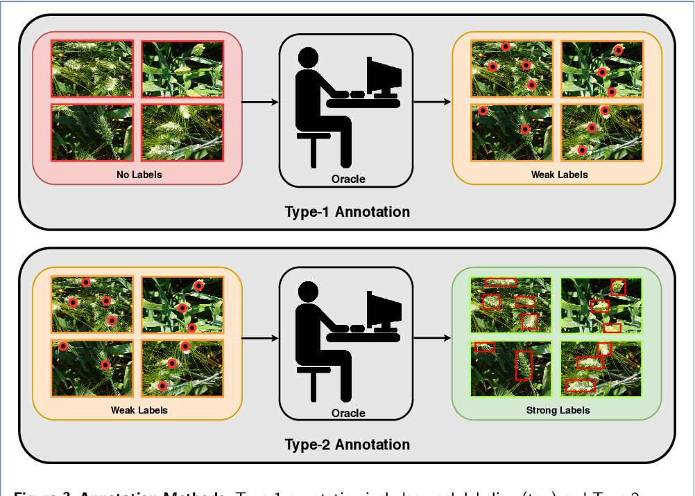 Figure 4 for Active Learning with Weak Supervision for Cost-Effective Panicle Detection in Cereal Crops