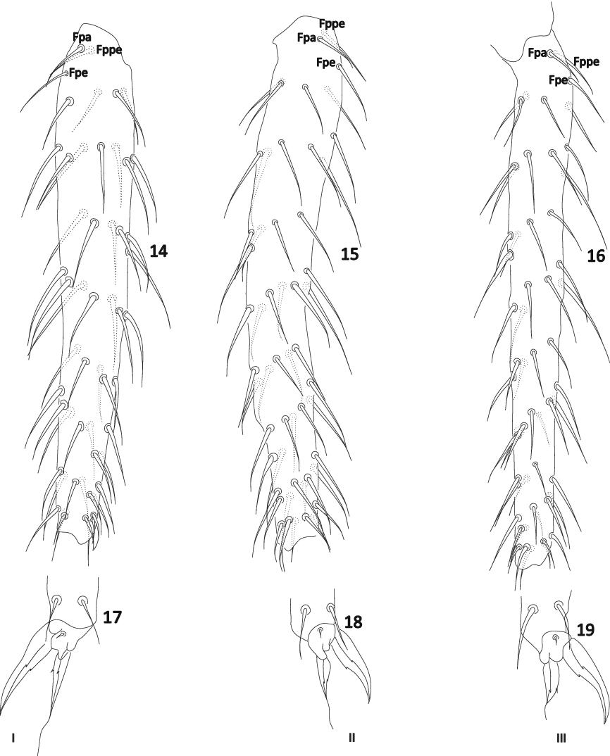 figure 14–19