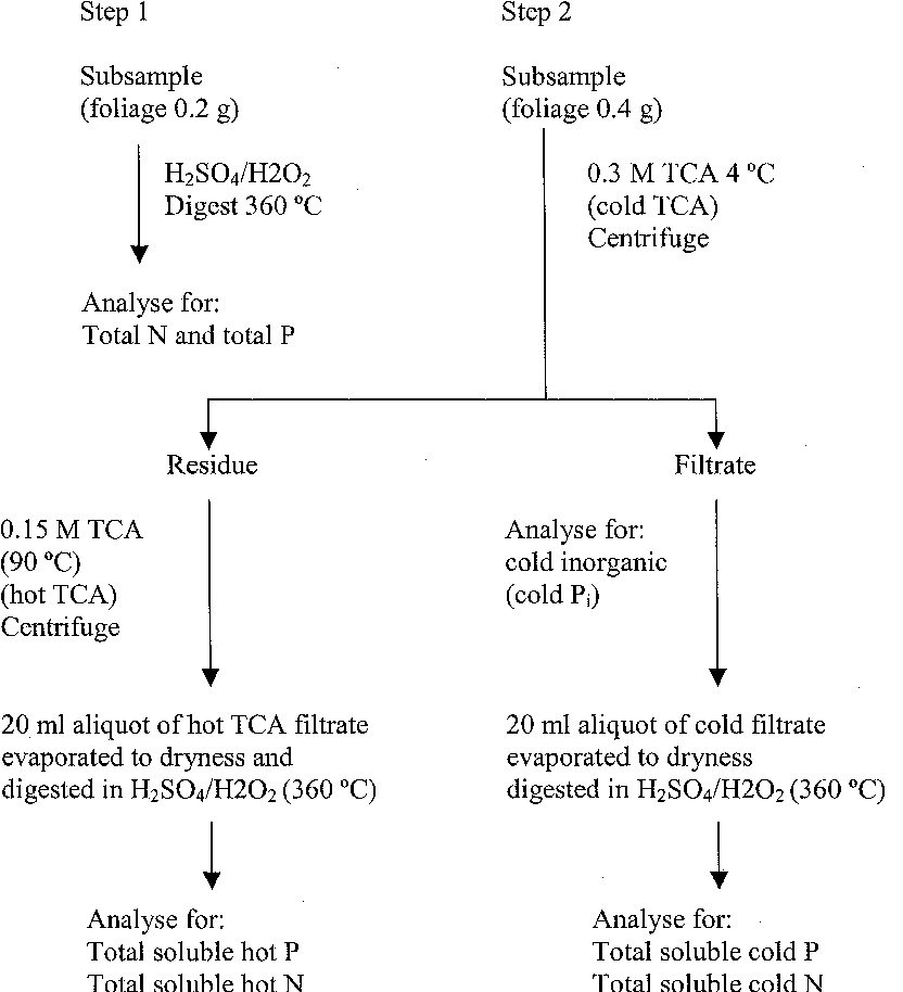 Figure 1. The sequence of extraction of foliage samples with trichloroacetic acid (TCA) and the notation of fractions derived (from Hooda and Weston 1999). Extraction notation for N is derived similarly to that of P.