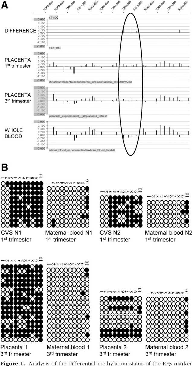Unique Maternal Blood Dna Markers >> Differential Dna Methylation As A Tool For Noninvasive Prenatal