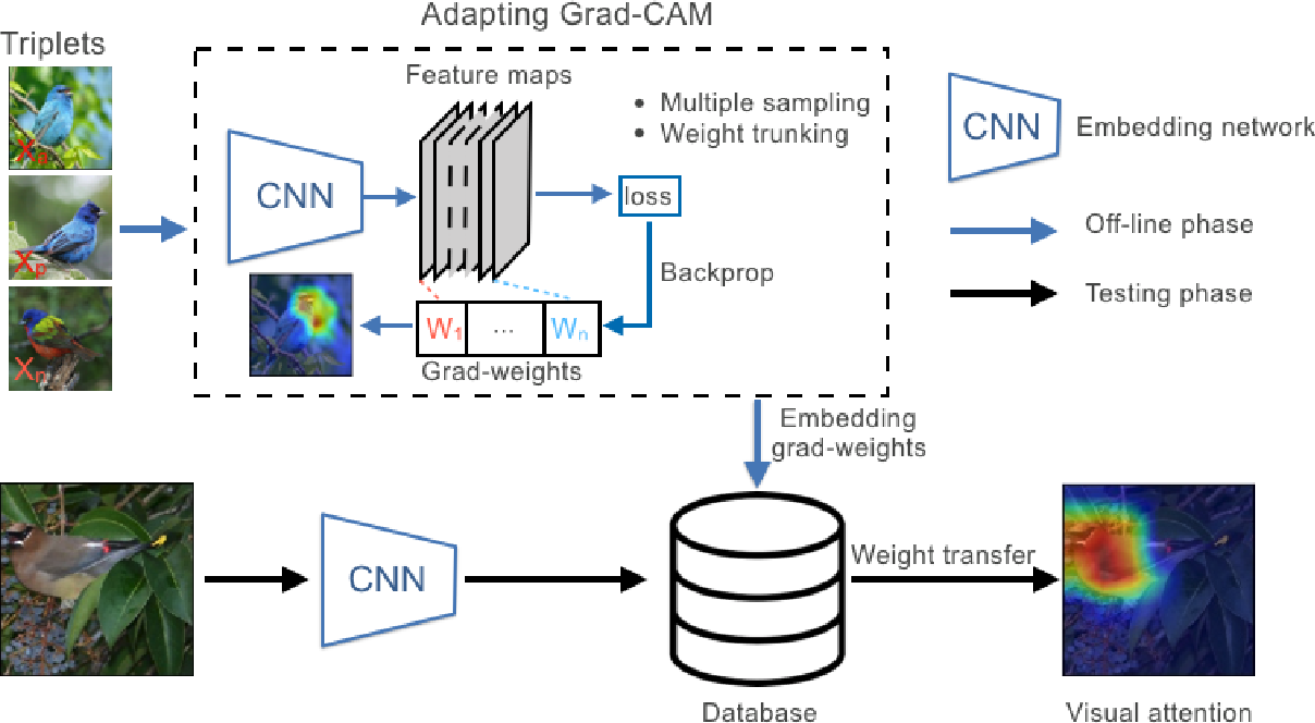Figure 3 for Adapting Grad-CAM for Embedding Networks
