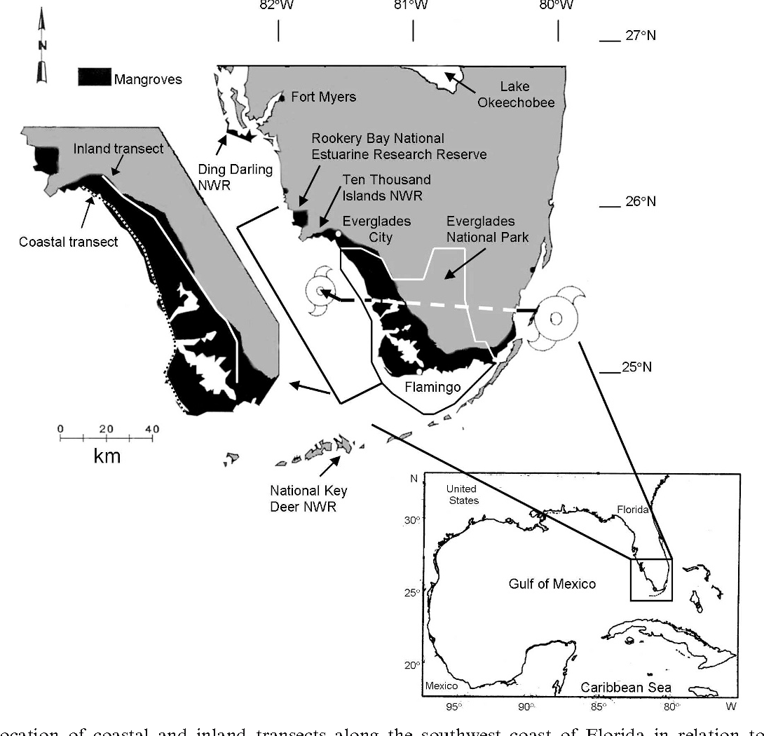 Figure 1. Location of coastal and inland transects along the southwest coast of Florida in relation to the path of Hurricane Andrew.