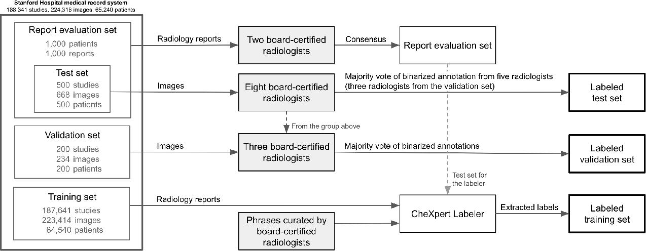 Figure 1 for Structured dataset documentation: a datasheet for CheXpert