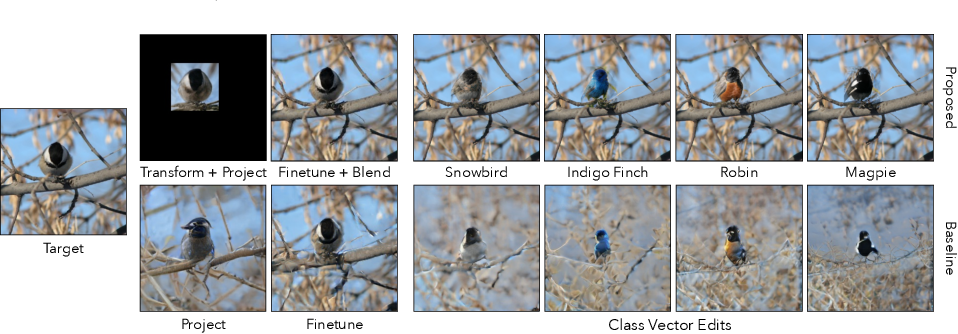 Figure 1 for Transforming and Projecting Images into Class-conditional Generative Networks