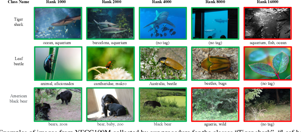 Figure 2 for Billion-scale semi-supervised learning for image classification