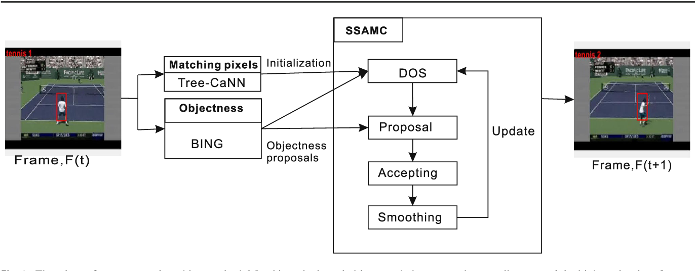 Fig. 1 Flowchart of our proposed tracking method. Matching pixels and objectness help to steer the sampling around the highest density of states, and the sampler update the density of states (DOS) iteratively to attain high-quality and excellent estimations