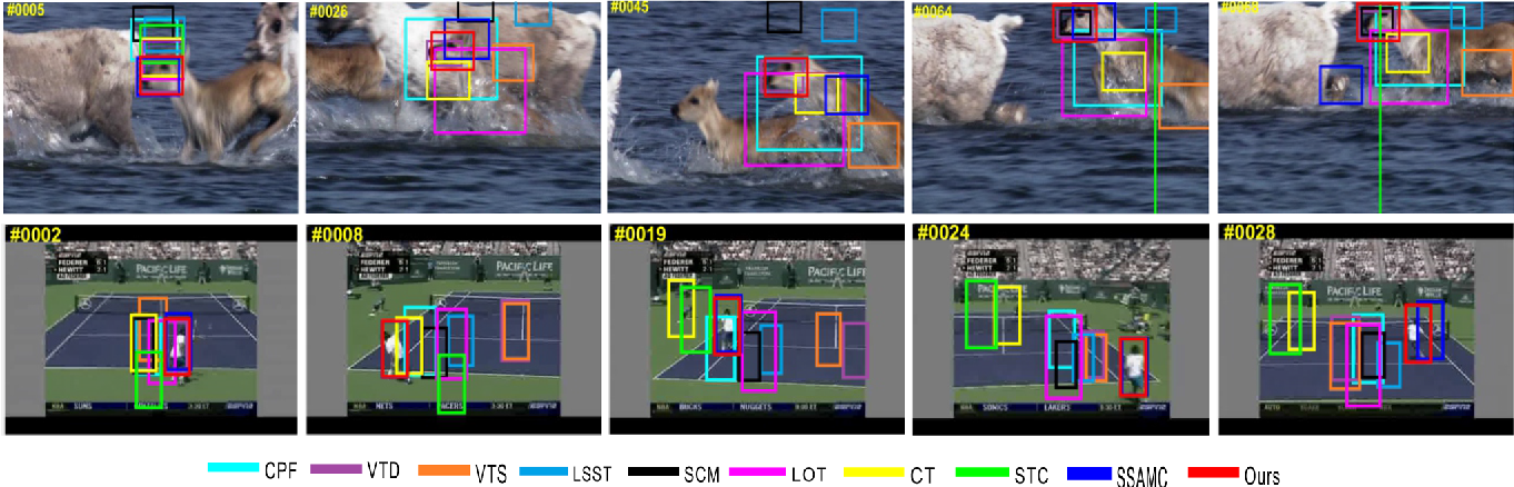 Fig. 6 Screenshots of tracking results on rapid motion sequences. (top: Animal bottom: Tennis)