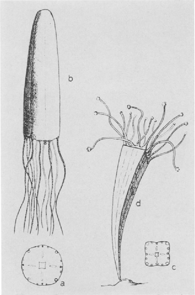 figure 178,179