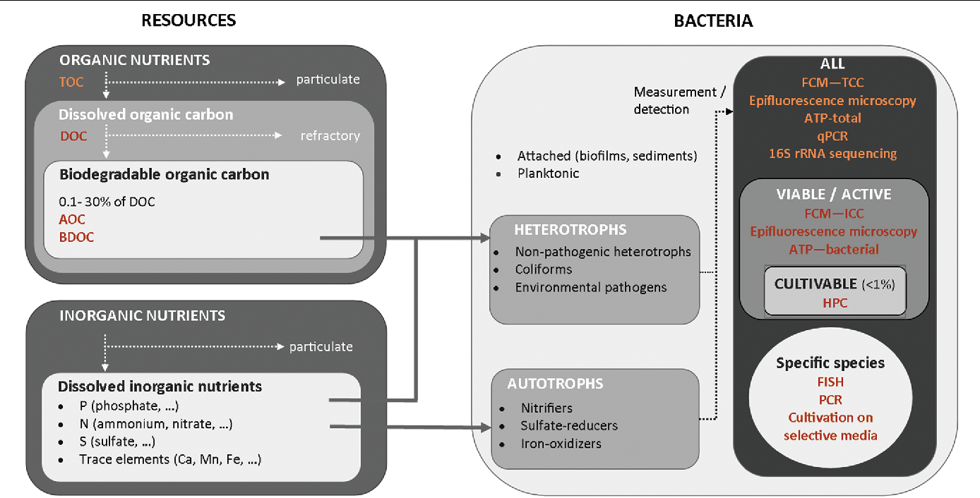 FIGURE 2 | Overview of resources available for different types of bacteria and of characterization methods of organic nutrients and bacterial communities in water.