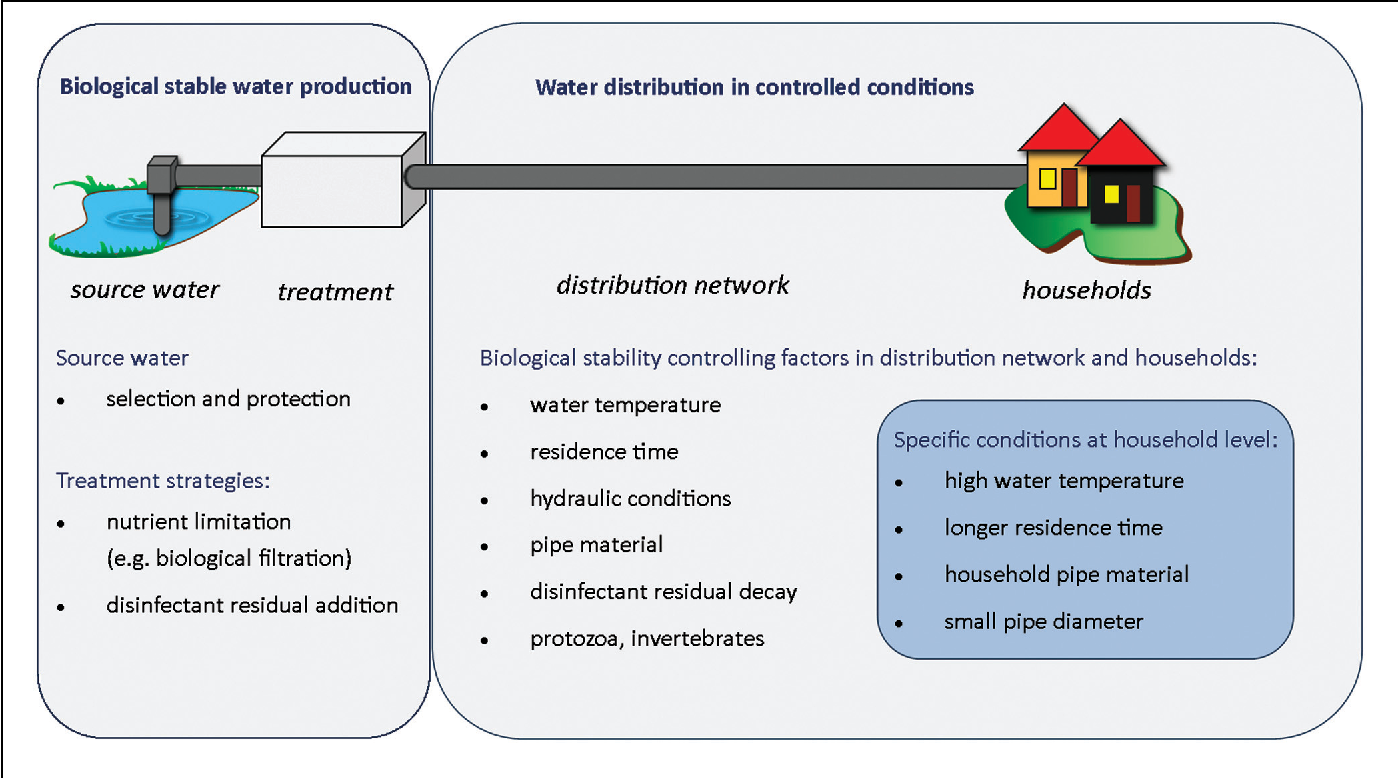 FIGURE 4 | Biological stability components: source to tap overview of critical parameters controlling biological stability in drinking water systems.