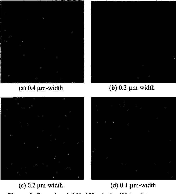 Figure 5. Reproduced 1OOx 100 pixels. White dots mean noisy pixels.