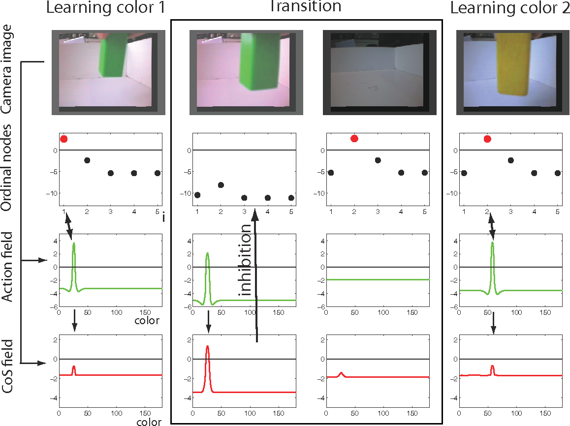 Figure 9: Sequence learning in the DFT architecture, driven by a user-presented visual input. See text for details.