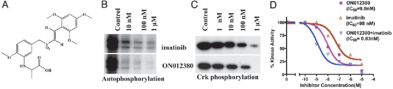 Fig. 1. BCR-ABL inhibitory activity of ON012380. (A) Structure of ON012380. (B and C) Ten nanograms of recombinant BCR-ABL protein was mixed with different concentrations of the indicated inhibitor, and kinase assays were performed by using Crk as a substrate to measure autophosphorylation and substrate (Crk) phosphorylation. (D) BCR-ABL kinase assays were performed as described in Materials and Methods by using c-Crk as a substrate. The reactions mixtures were spotted onto strips of P81 phosphocellulose paper, washed, and counted. In experiments for which a mixture of imatinib and ON012380 was used, the reaction mixtures contained a constant amount of imatinib (10 nM) and various amounts of ON012380. The values from individual samples were analyzed and plotted as a function of drug concentration. Data points represent an average of three independent experiments performed in duplicate.