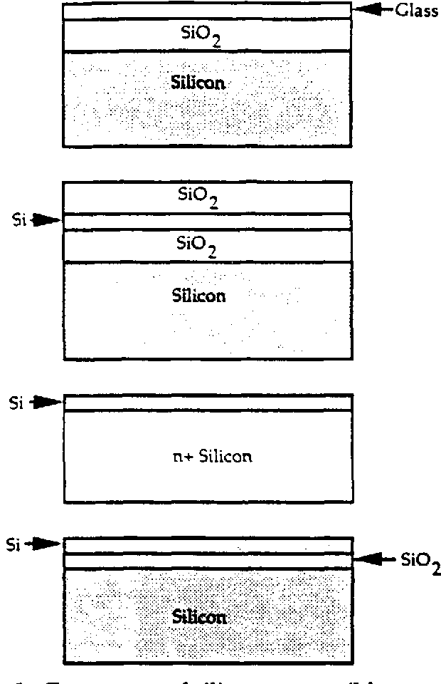 Figure 1.3 Four types of silicon compatible waveguides.