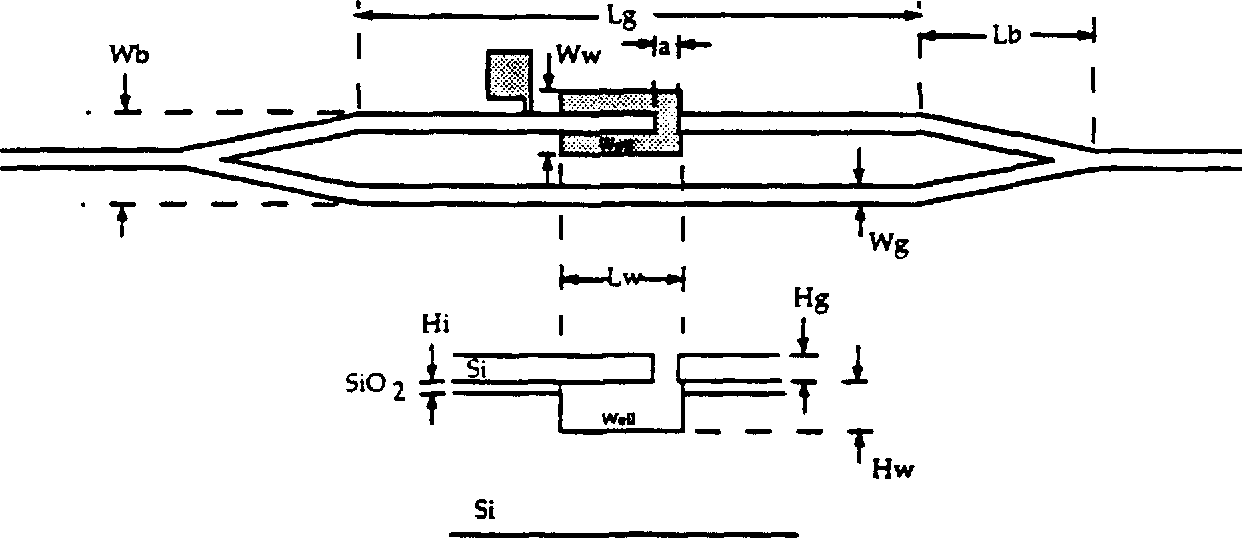 Figure 2.2 Schematic representation of a silicon micro-cantilever beam integrated test structure