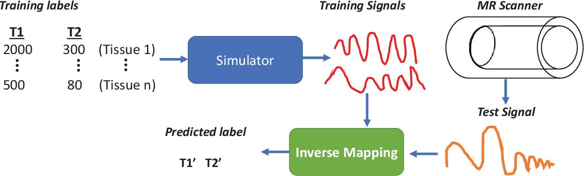 Figure 1 for Magnetic Resonance Fingerprinting using Recurrent Neural Networks