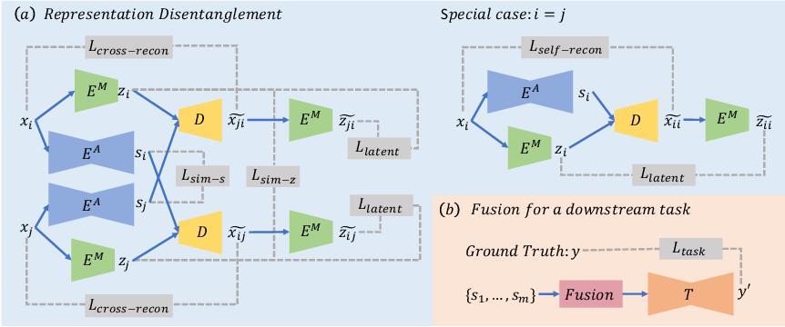Figure 1 for Representation Disentanglement for Multi-modal MR Analysis