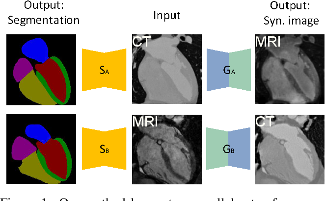 Figure 1 for Translating and Segmenting Multimodal Medical Volumes with Cycle- and Shape-Consistency Generative Adversarial Network