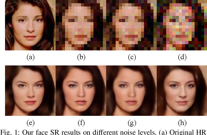 Figure 1 for Facial Attribute Capsules for Noise Face Super Resolution