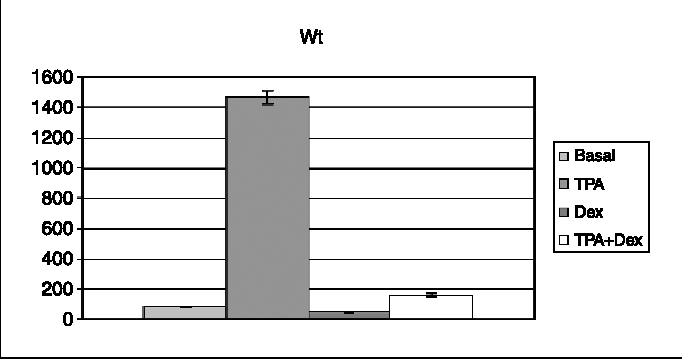 Figure 2. Luciferase expression (arbitrary units) driven by the wild-type MMP-3 promoter under different experimental conditions. Dex, dexamethasone. Data obtained from six independent experiments.