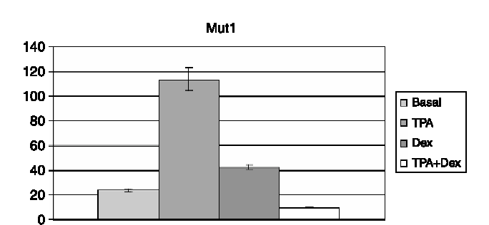 Figure 3. Luciferase expression (arbitrary units) driven by the mut1 MMP-3 promoter under different experimental conditions. Dex, dexamethasone. Data obtained from six independent experiments.