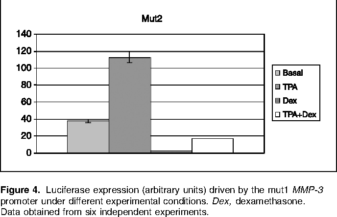 Figure 4. Luciferase expression (arbitrary units) driven by the mut1 MMP-3 promoter under different experimental conditions. Dex, dexamethasone. Data obtained from six independent experiments.