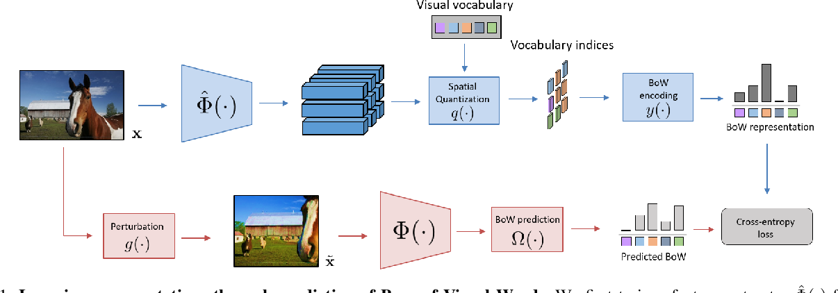 Figure 1 for Learning Representations by Predicting Bags of Visual Words