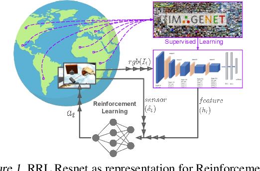 Figure 1 for RRL: Resnet as representation for Reinforcement Learning